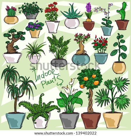 Indoor Plants, hand drawn collection - stock vector