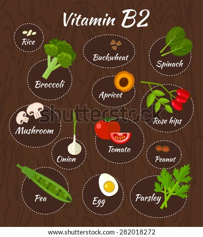 Infographic set of vitamin B2 and useful products: buckwheat, tomato, broccoli, onion, apricot, parsley, peanut, egg, rice, mushroom ,rose  hips, spinach. Healthy lifestyle and diet vector concept. - stock vector