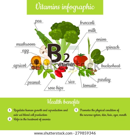 Infographic set of vitamin E and useful products: pea, broccoli, onion, spinach, buckwheat, parsley, tomato, rice, rose hips, nut, apricot, egg, mushroom. Healthy lifestyle and diet vector concept. - stock vector