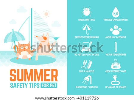 infographics cartoon character about safety tips for pet during summer