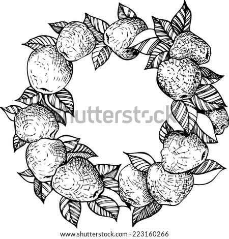 ink drawing decorative wreath with  apples and leaves, hand drawn vector illustration - stock vector