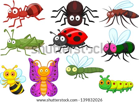 Insect cartoon collection set - stock vector