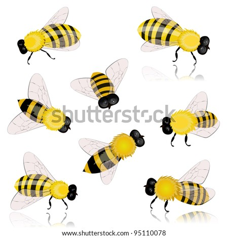 insects bees - stock vector