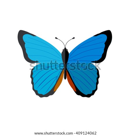 Insects butterflies isolated on white background. Beautiful butterfly with big wings and elegant blue and black colors pattern. Insect flying isolated on white backdrop. Vector ilustration - stock vector