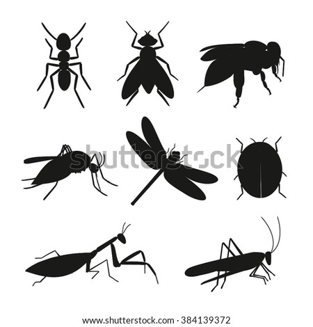 Insects silhouette vector set. Black Insects collection of ant, fly, bee, mosquito, dragonfly, beetle, ladybug, mantis, grasshopper. Insect  isolated on white background. - stock vector