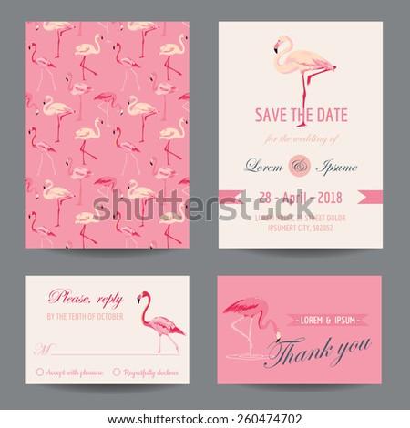 Invitation/Congratulation Card Set - Flamingo Theme - in vector - stock vector