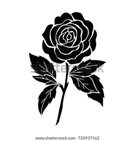 isolated black rose, flower tattoo illustration, silhouette vector