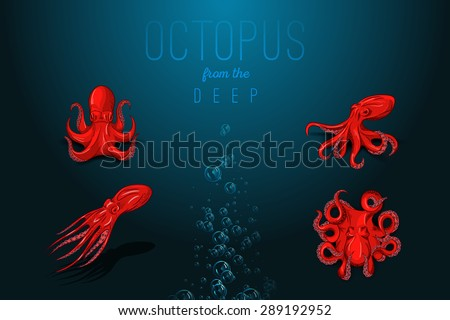 Isolated orange octopus with shadow. Hand drawn original close up vector illustration or icon. Template for poster, flyer, print, tattoo, logo or symbol. - stock vector