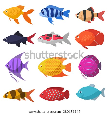 Isolated river fish. Set of freshwater aquarium cartoon fishes. varieties of ornamental popular color fish. Flat design fish. Vector illustration, fishes. fish collection. aquarium modern flat fishes.