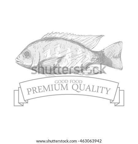 Isolated sea food label design, Vector illustration