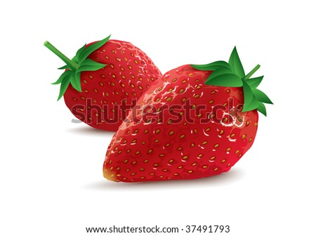 isolated vector strawberries - stock vector