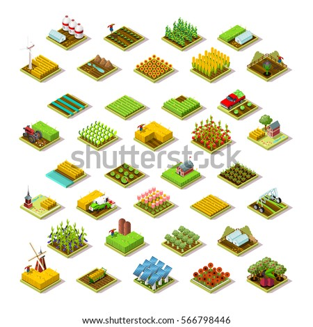 Isometric farm house building staff farming agriculture wheat field scene. 3D isometric barley city map icon set game tile collection. Farmland isometric tractor corn plant vector illustration