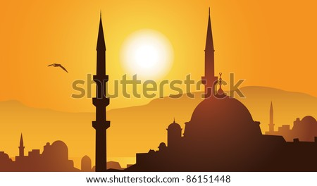 Istanbul city and mosque in sunset vector image - stock vector