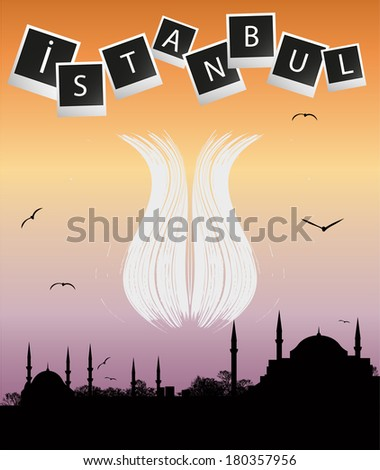 Istanbul silhouette and abstract tulip - stock vector