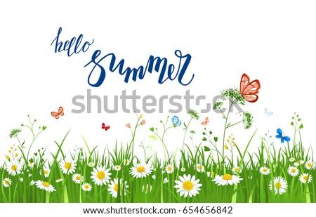 Itu0027s Summer Time Quote. Summer Or Spring Landscape For Design Banner,  Ticket, Leaflet