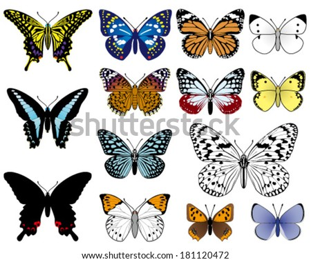 japanese butterflies, isolated on white background. - stock vector