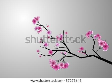 Japanese cherry blossom - stock vector