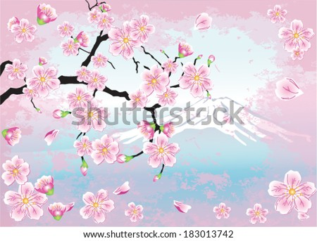 Japanese cherry - sakura on a background of Mount Fuji - stock vector