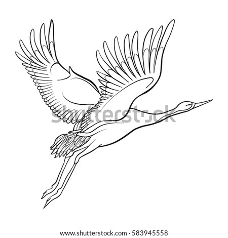 Japanese Crane Isolated Drawing Stock Line Stock Vector