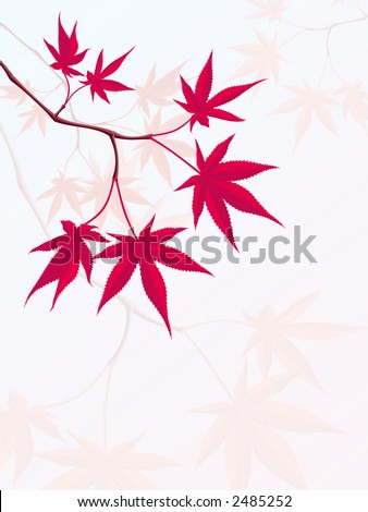 Japanese Maple - stock vector