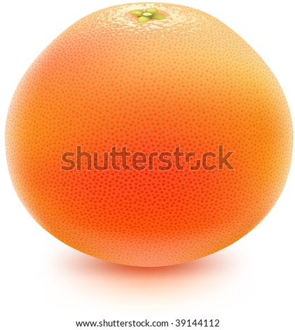 Juicy grapefruit. Photorealistic vector, contains gradient mesh elements. More fruits & food-related objects in my portfolio! - stock vector