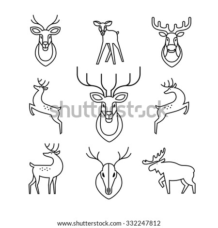 Jumping and standing deers, moose, antlers and horns, stuffed deer heads and scull. Thin line art icons set. Modern black symbols isolated on white for infographics or web use. - stock vector