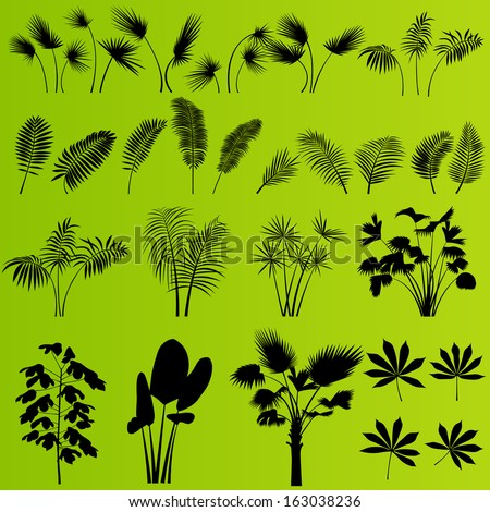 Jungle forest palm and plant vector background set - stock vector