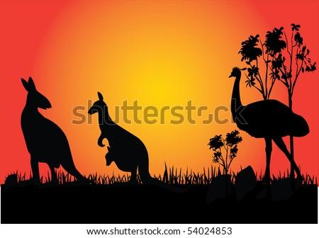 kangaroo and emu in the sunset Australia - stock vector