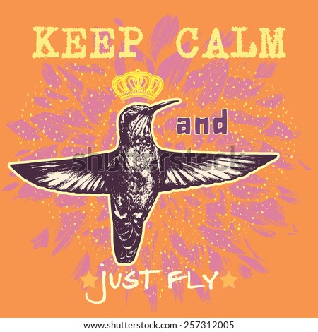 Keep Calm Just Fly Motivational Poster Stock Vector 2018 257312005