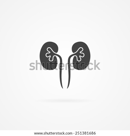 Kidneys icon. - stock vector
