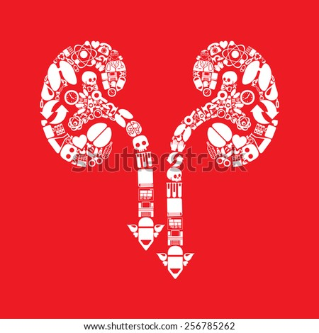 kidneys icon - stock vector