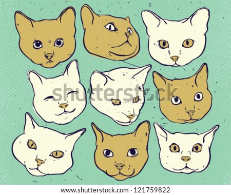 Kitties heads