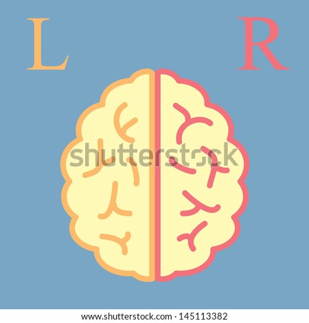 L & R Brain - stock vector