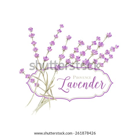 Label with lavender flowers and damask frame. Vector illustration. - stock vector