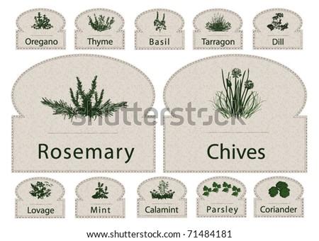 Labels Herbs paper - stock vector