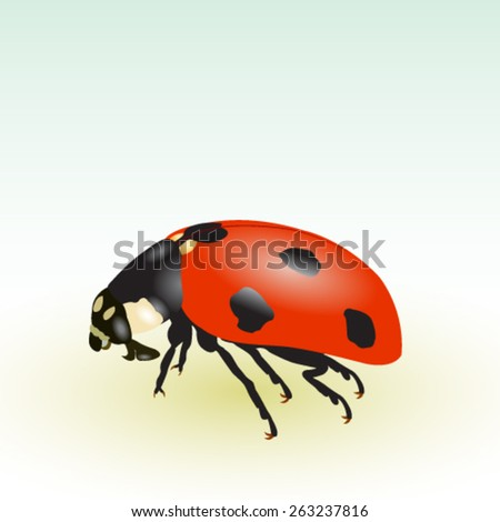 Ladybug isolated on the gradient background - vector illustration.