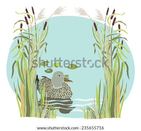 Lake and duck in the reeds - stock vector
