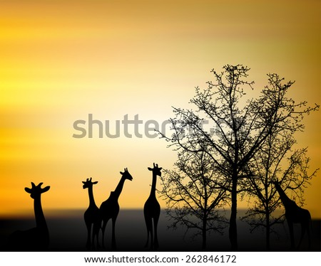 Landscape Scene of branch big Tree Silhouetted against a Beautiful Cloudy Sky at Sunset and giraffe. - stock vector