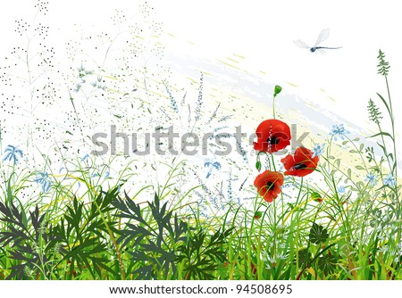 Landscape with wild grass and flowers and flying dragonfly - stock vector