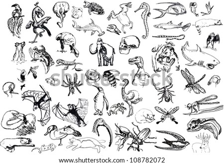 large collection of animals - hand drawing converted to a vector - stock vector