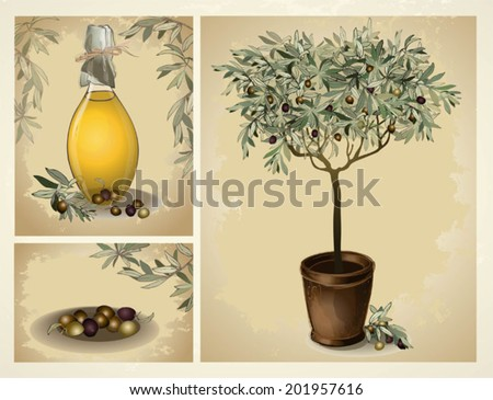 lass bottle of premium virgin olive oil and some olives with leaves. Illustration olive tree. - stock vector