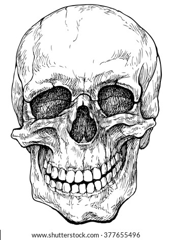 Laughing skull - hand drawn vector illustration, isolated on white - stock vector