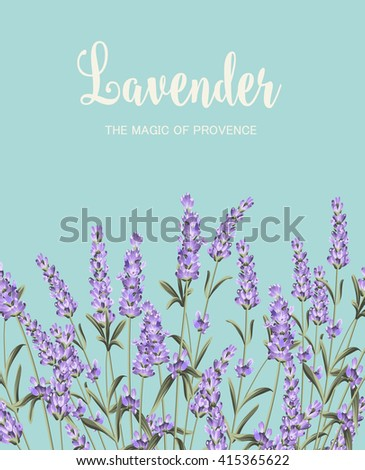 Lavender sign label. - stock vector