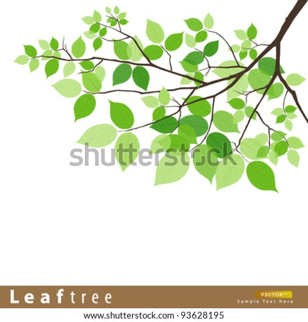 Leaf green tree vector illustration - stock vector