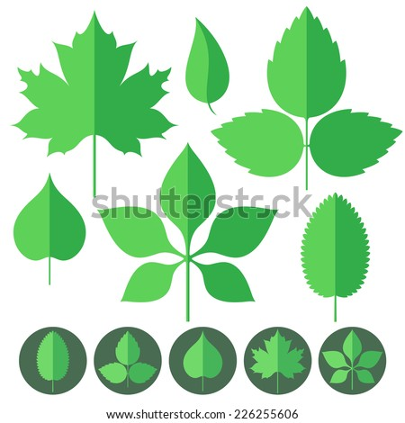 Leaf. Icon Set