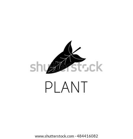 Hand Drawn Baobab Fruit Leaves Seeds Vector 275209916 – Editable Leaf Template