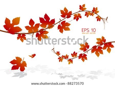 leaf vector - stock vector