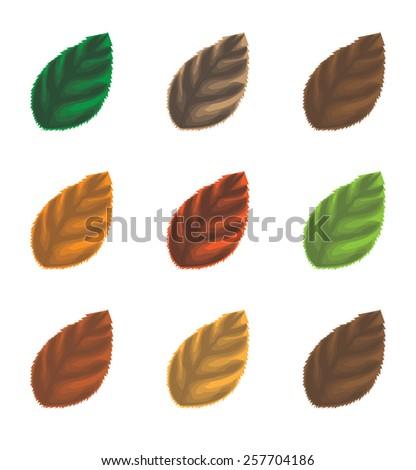 Leaves - stock vector
