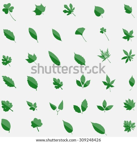 leaves set of 35 leavs, green, silhouette eco leav isolated on white bachground, editable elements, stock vector illustration - stock vector