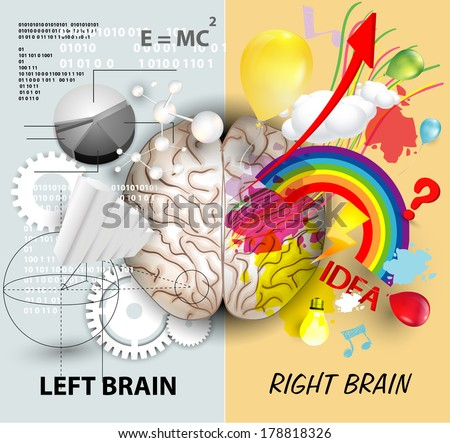 Left and Right brain functions - stock vector